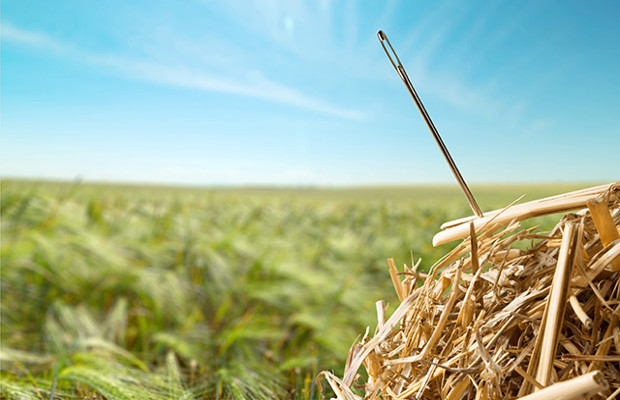 Chipworks: finding a needle in a haystack