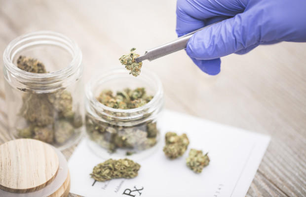 Cannabis patenting remains low amid legalisation: report