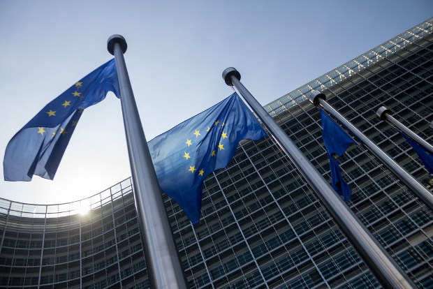 "European Commission calls for ICANN ""globalisation"""