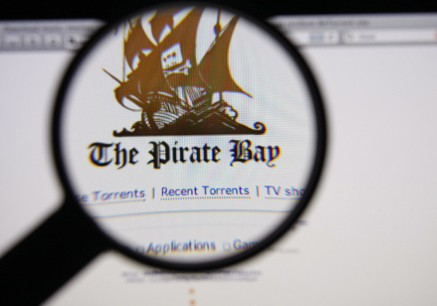 Pirate Bay co-founder arrested