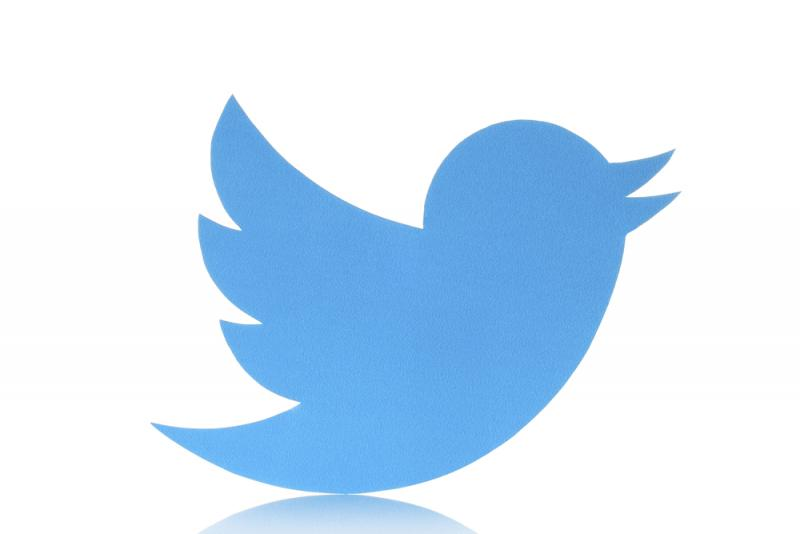 INTA 2015: Twitter, fair use and a 'socialised' logo