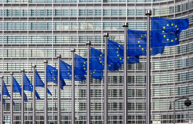 EU expert group criticised over SEP proposals
