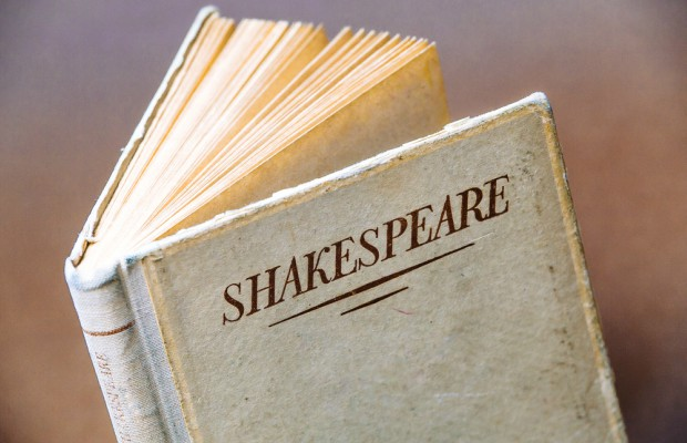 'Shakespeare in the Park' creators target hotel owner in TM suit