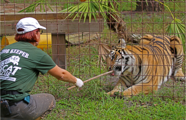 Tiger King Joe Exotic loses zoo to Carole Baskin amid TM dispute